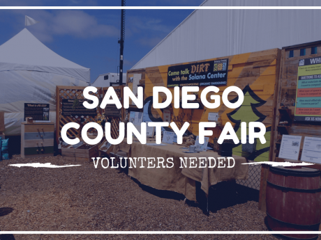 San Diego County Fair Volunteers Needed